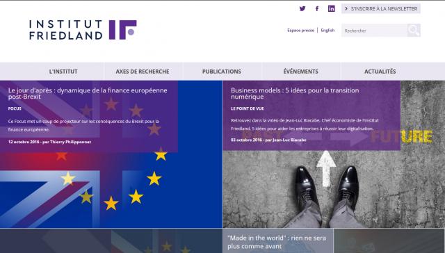 Institut Friedland front page screenshot image