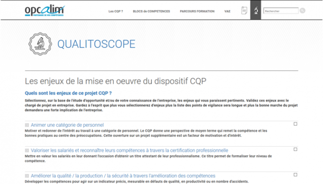 Qualitoscope