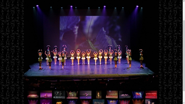 Art of Dance show's page